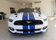 Ford Mustang Fastback 5.0 V8 TiVCT GT